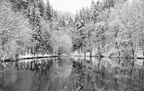 Sohlbacher Weiher im Winter